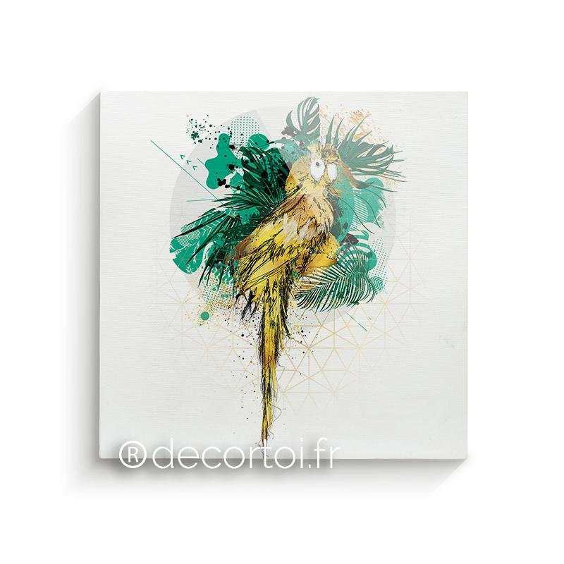 plexi perroquet jungle achat de tableaux sur internet decortoi. Black Bedroom Furniture Sets. Home Design Ideas
